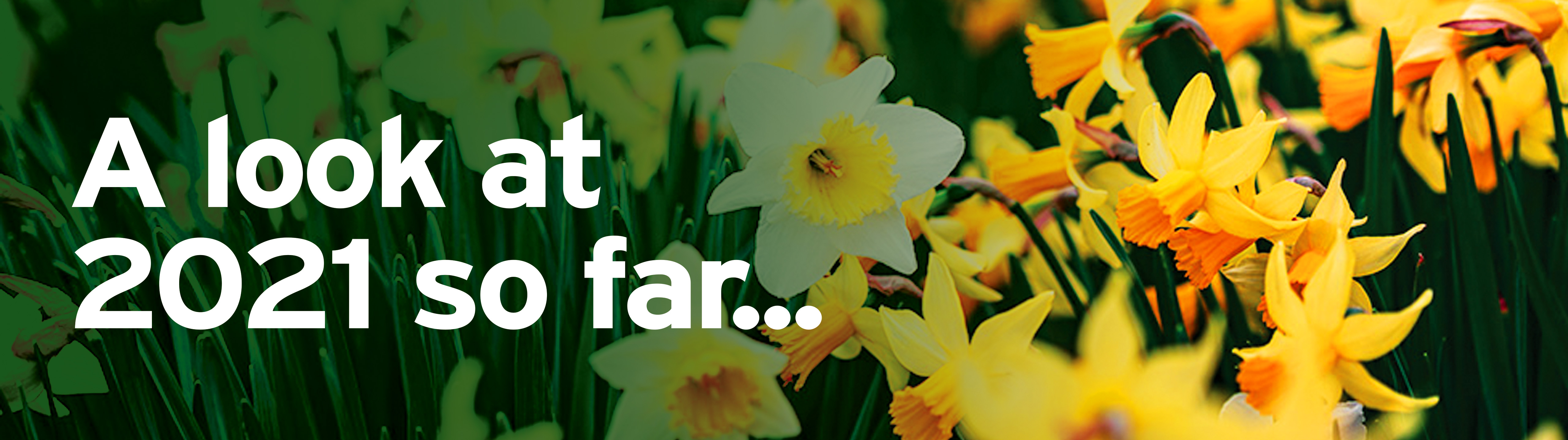 A Spring update by Chris Gibson MD